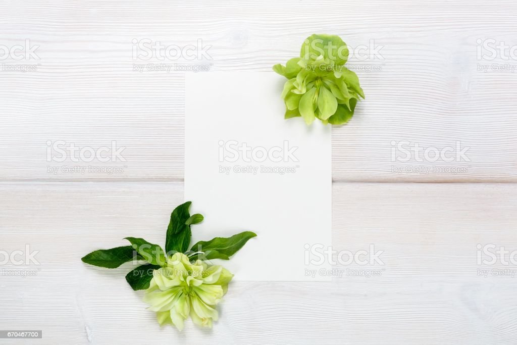White flowers and white sheet on wooden background. stock photo