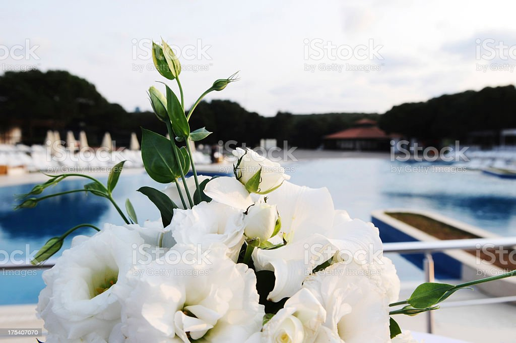 White flowers arrangement stock photo