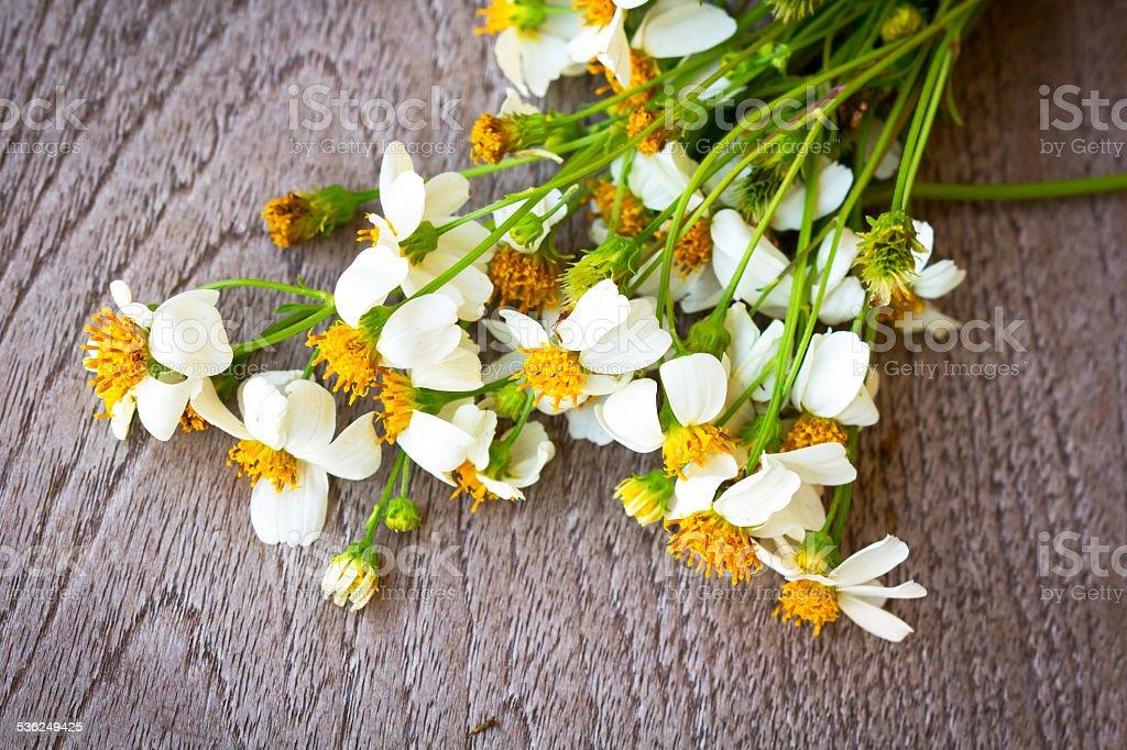 white flowers background stock photo