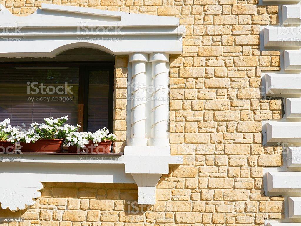 White flowers hangs on the window stock photo
