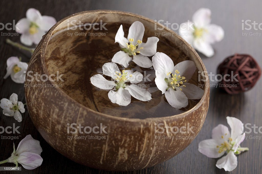 white flowers in bowl royalty-free stock photo