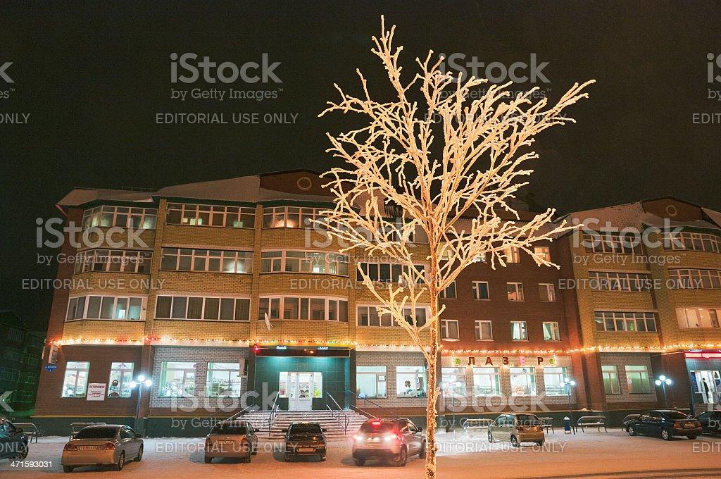 White frost. stock photo