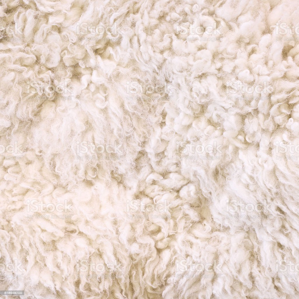 White fur as abstract background stock photo