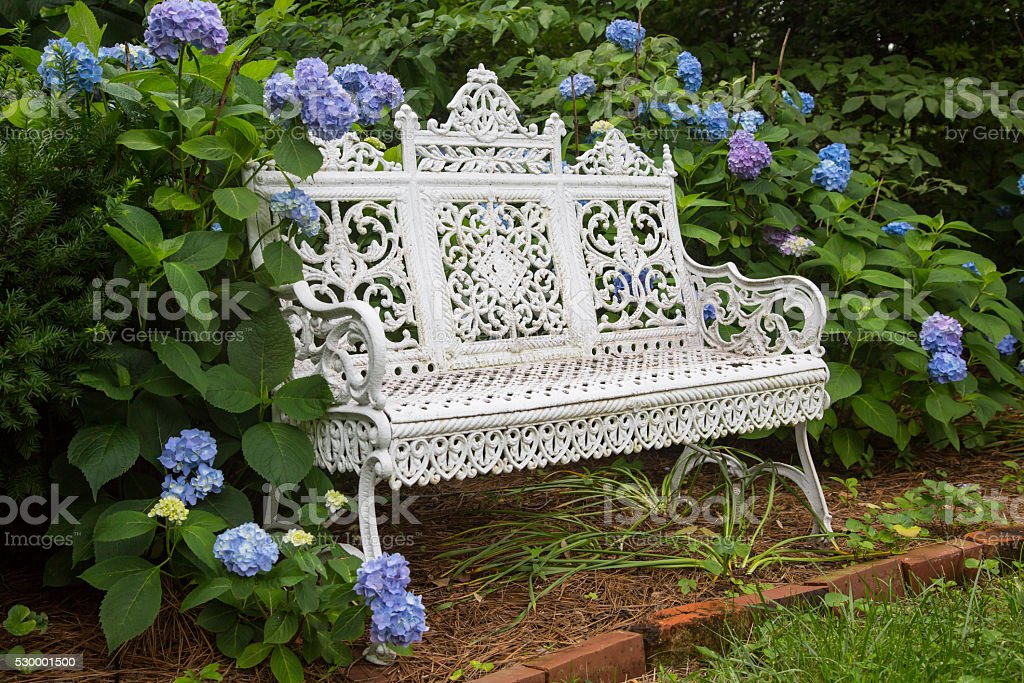 White Garden Bench with Blue Hydrangeas stock photo