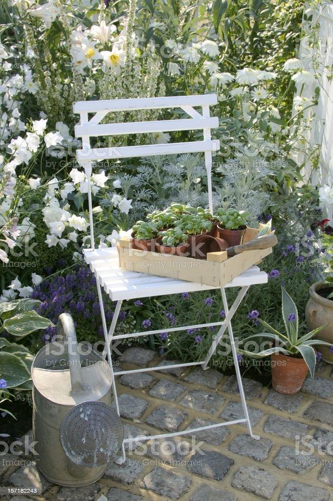 White garden royalty-free stock photo