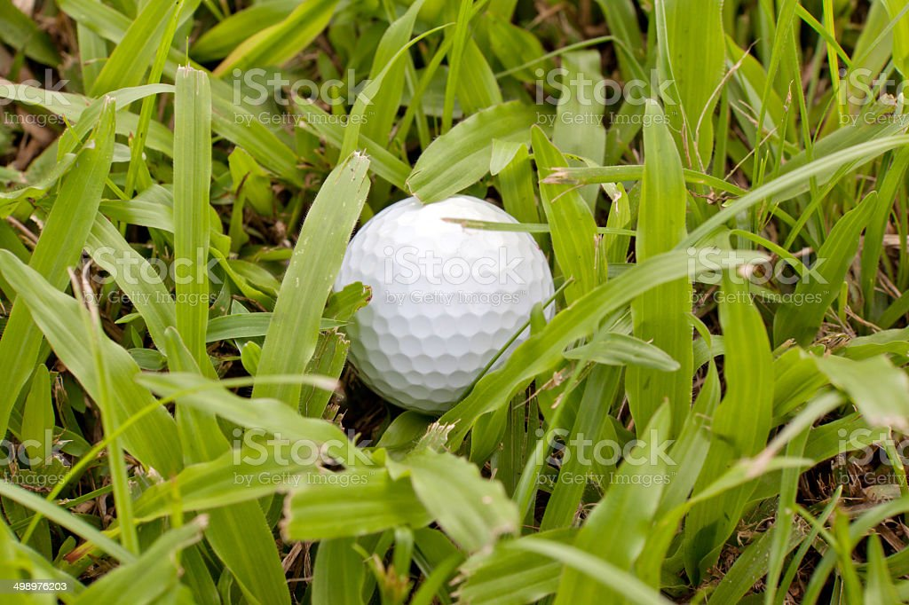 White golf ball drop in heavy rough royalty-free stock photo