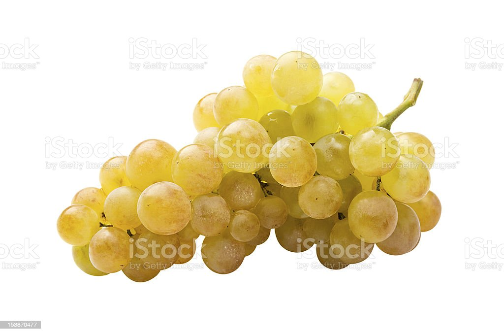 White grape (riesling) isolated stock photo