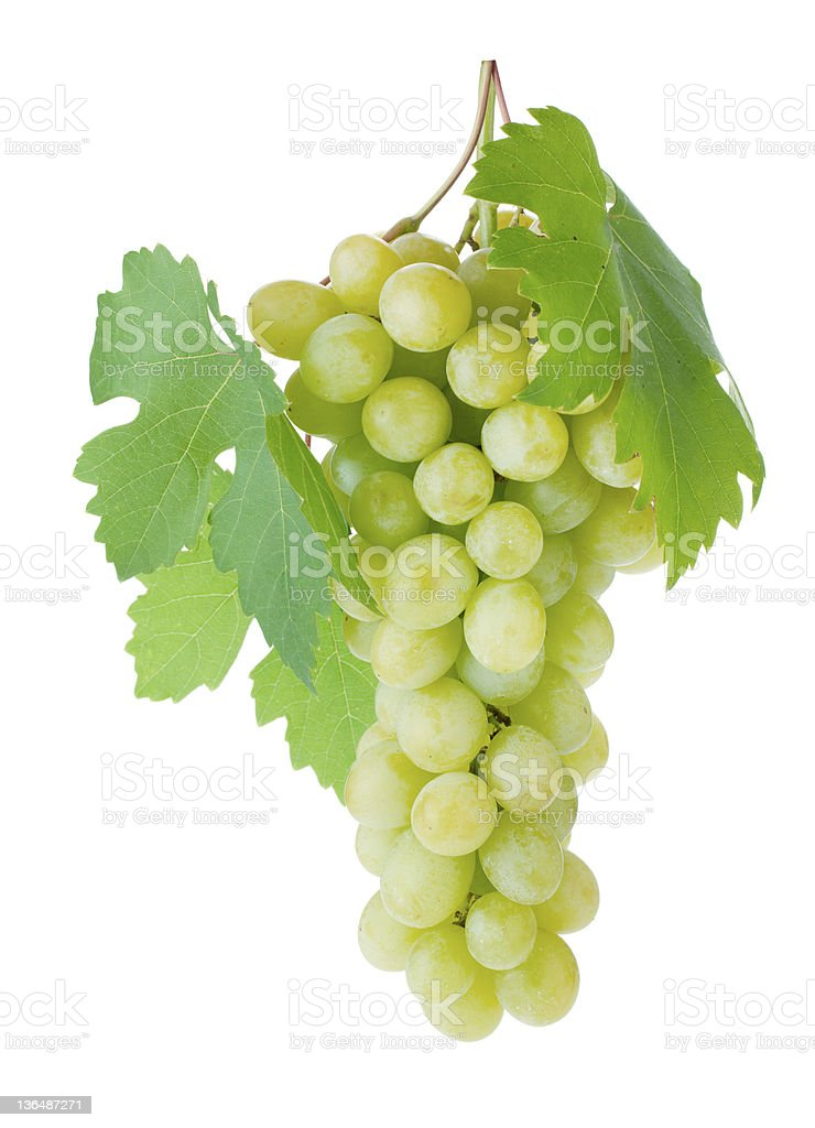 White grapes with leaves stock photo