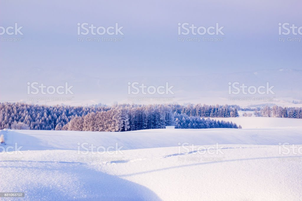 White hills stock photo