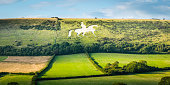 White horse historic chalk figure carved into English countryside panorama