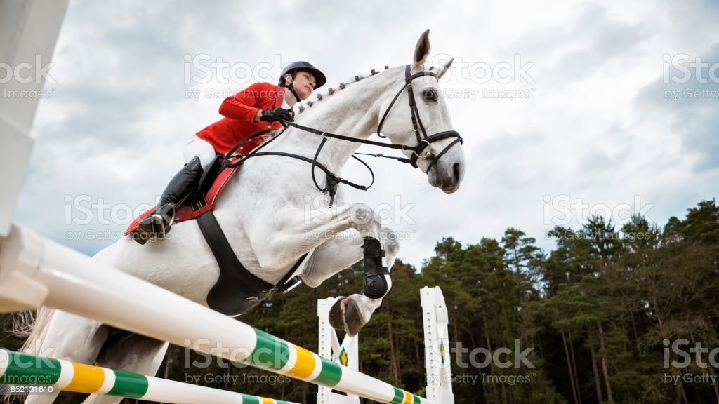 White horse jumping an oxer with his rider stock photo
