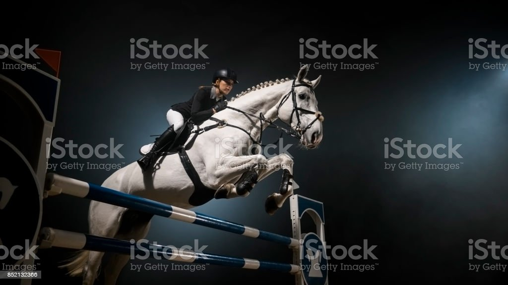 White horse jumping over rail in arena stock photo