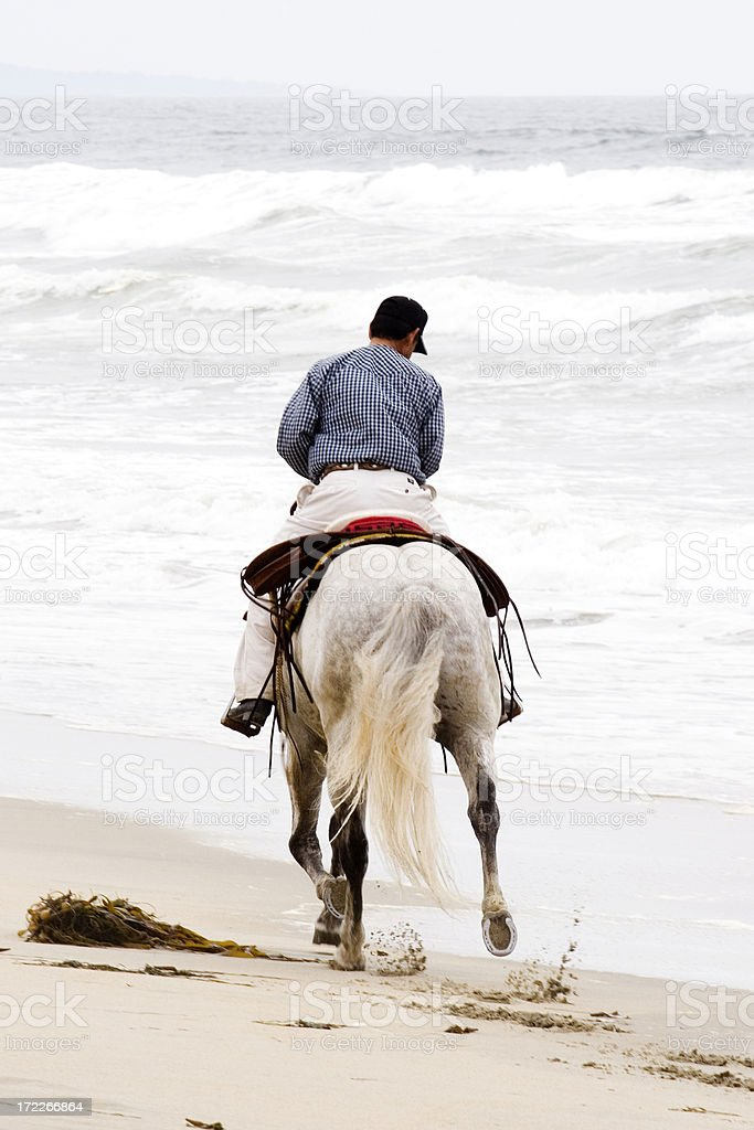 White Horse Riden on the Beach royalty-free stock photo