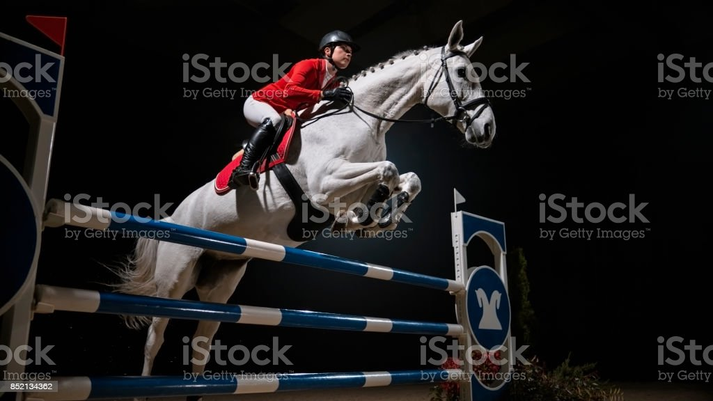 White horse with female rider jumping rail stock photo