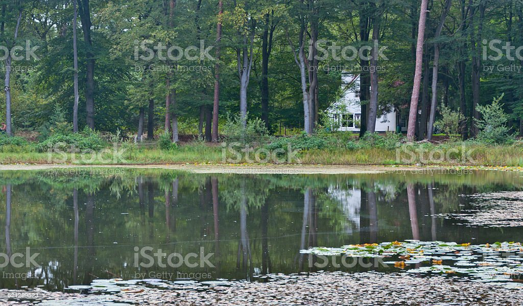 White house at a lake in the forest stock photo
