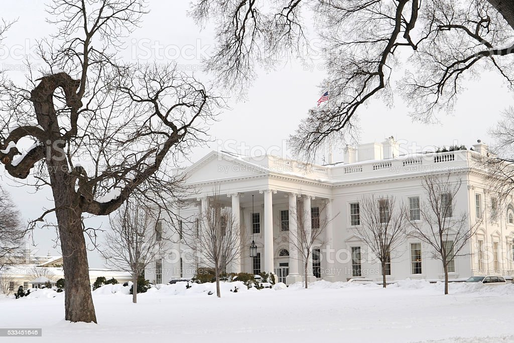 White House in Snow stock photo