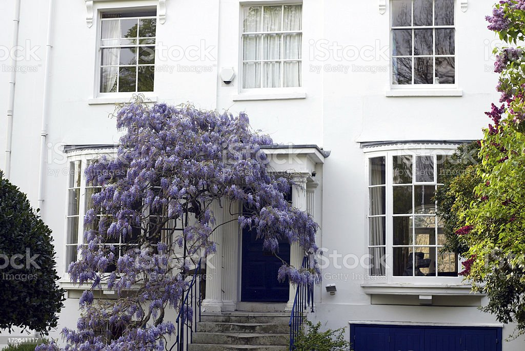 White House with Wisteria royalty-free stock photo