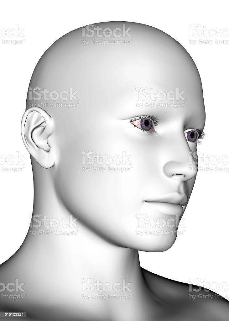 White Human Face - 3D stock photo