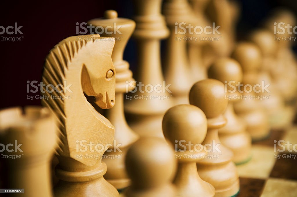 White Knight Chess Piece Close Up royalty-free stock photo