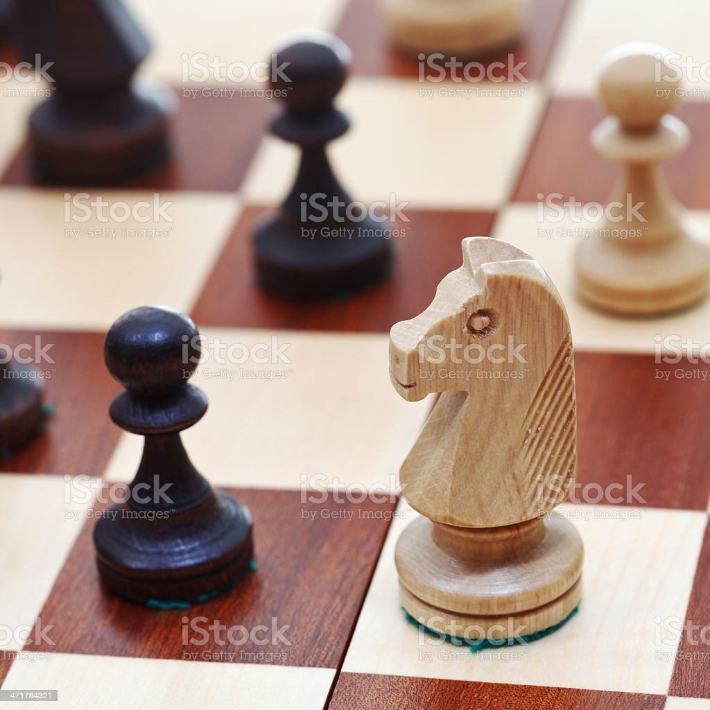 white knight on chessboard royalty-free stock photo
