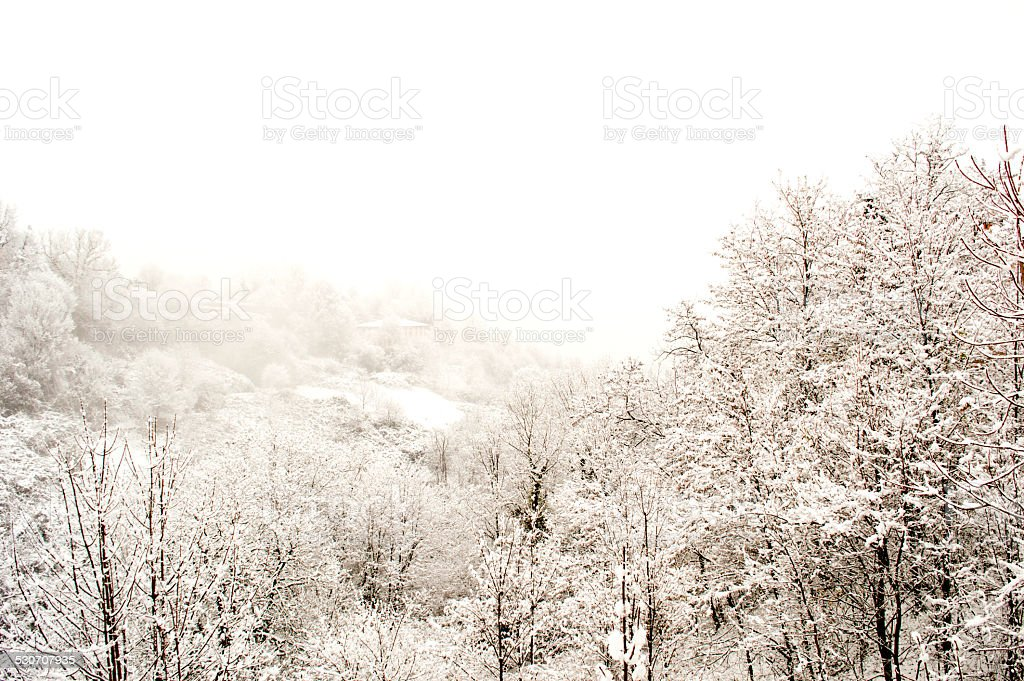 white landscape stock photo