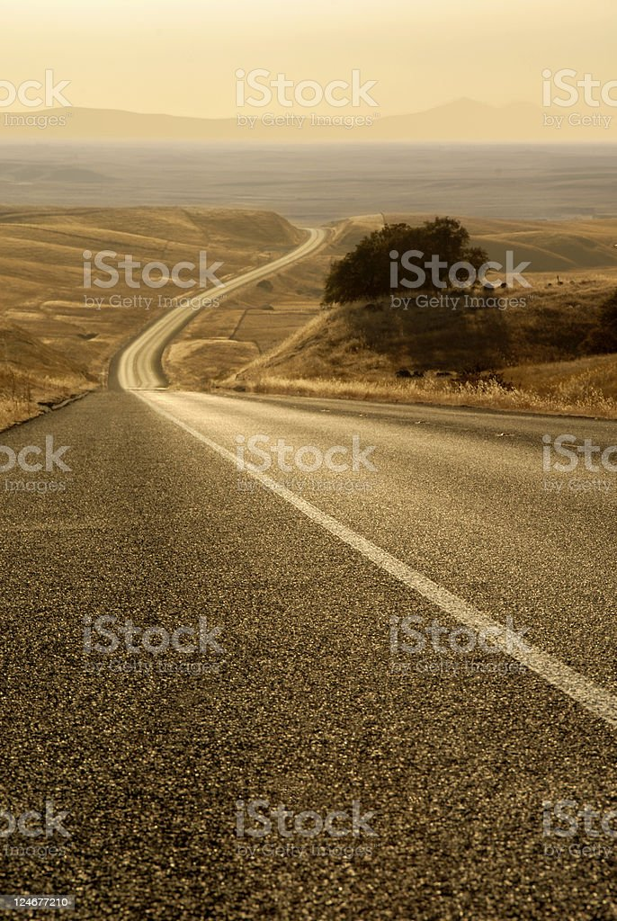 White Line Fever royalty-free stock photo