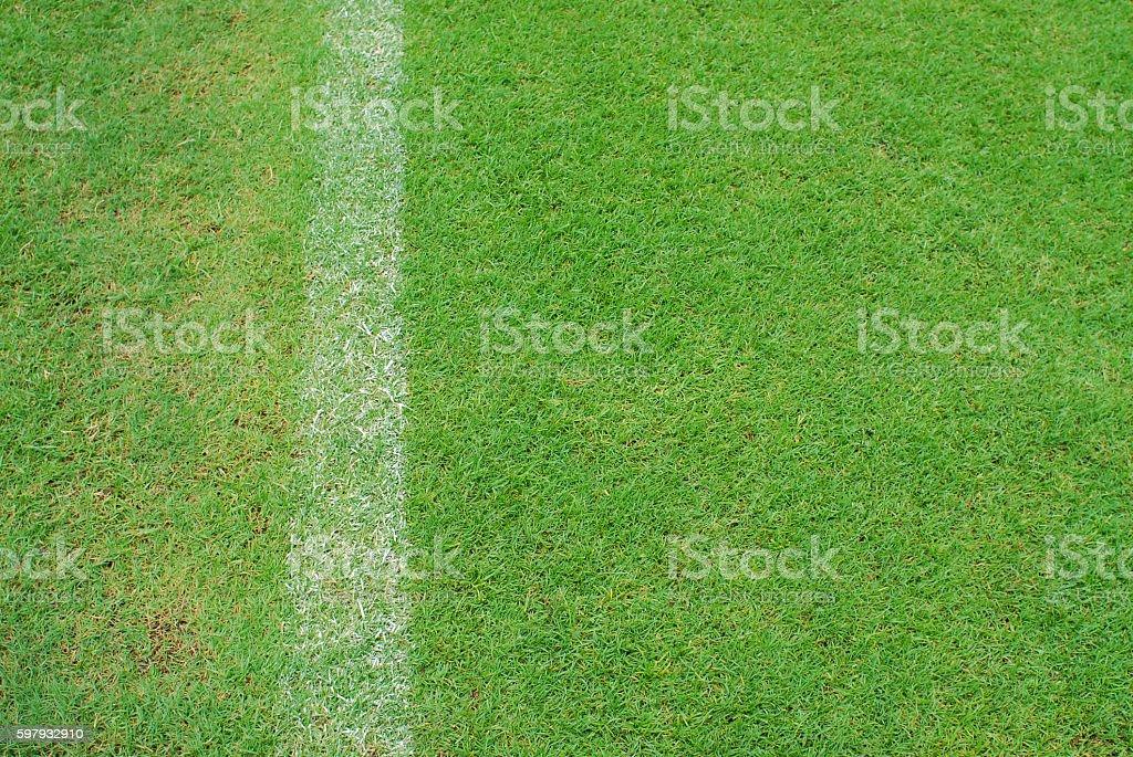 white line on green grass of football yard stadium stock photo