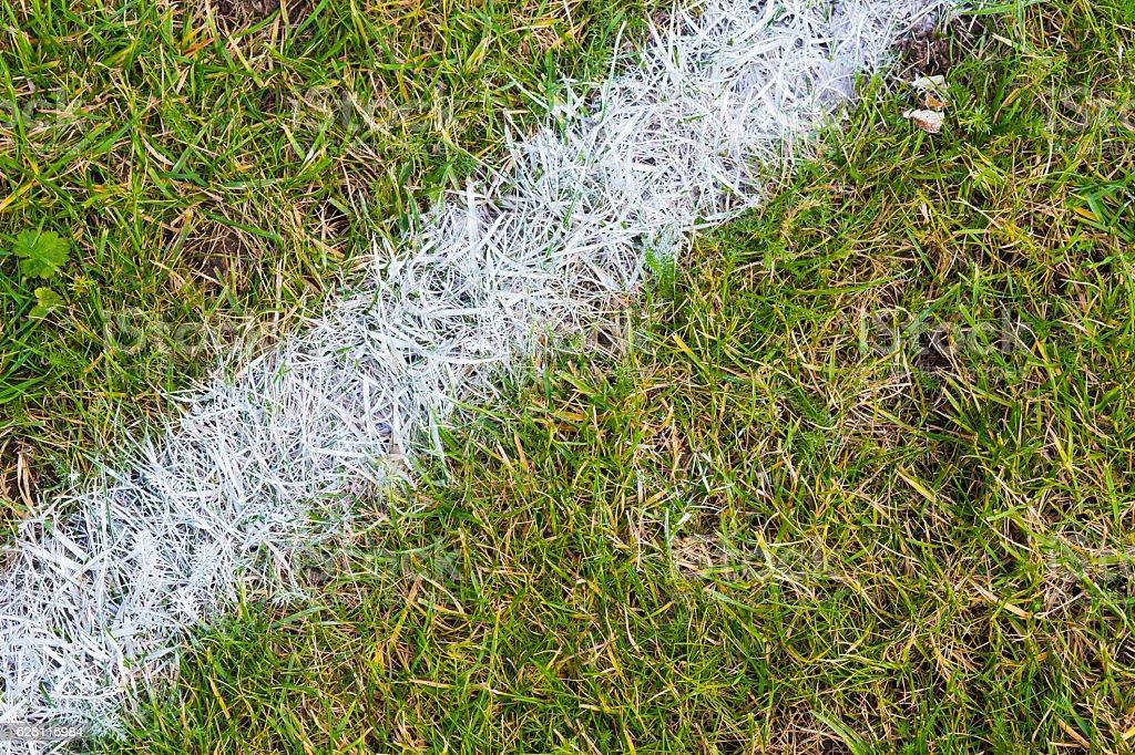 White line on the grass of sporting stadium stock photo