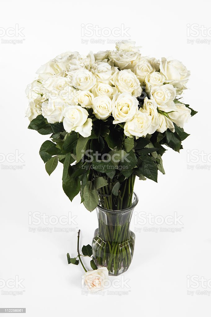 White long stem roses bouquet royalty-free stock photo