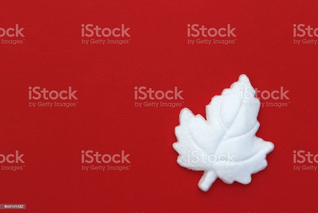White maple leaf on red background stock photo