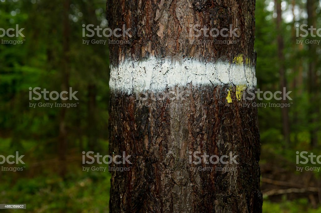White mark stock photo