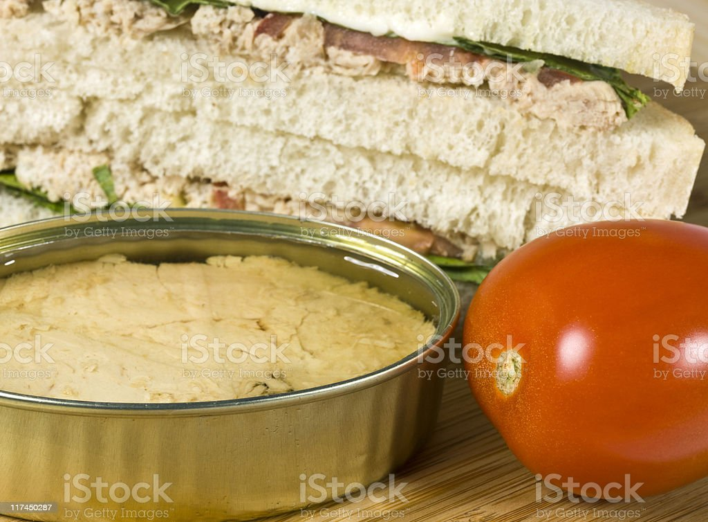 White meat tuna (bonito)  for lunch royalty-free stock photo