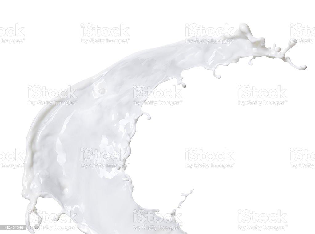 White milk isolated on white background stock photo