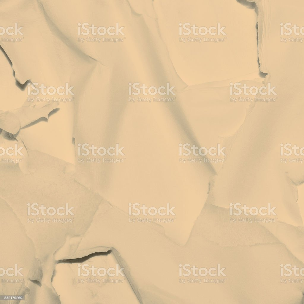 white mould on brie stock photo