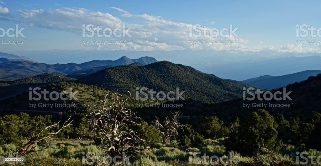 White Mountains Wilderness stock photo