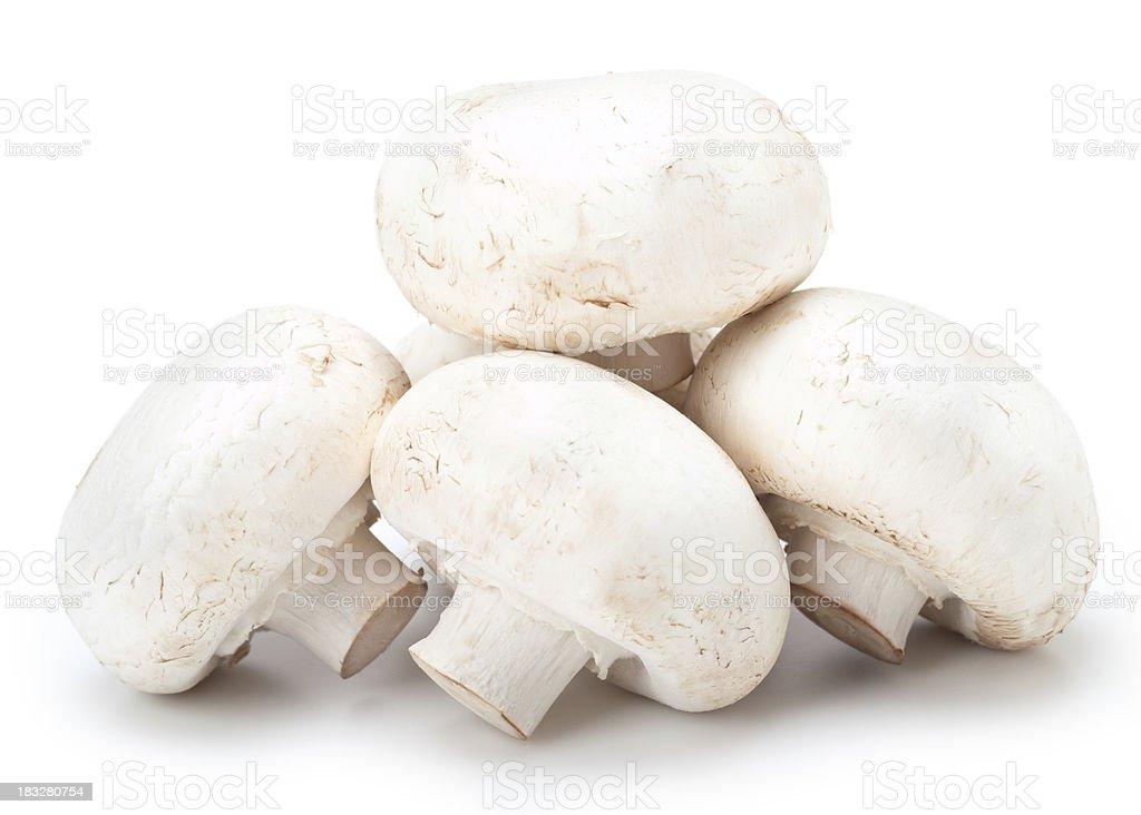 White Mushrooms stock photo