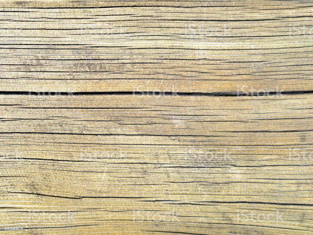 White oak wood texture stock photo