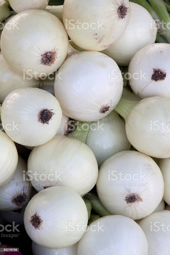 white onions stock photo