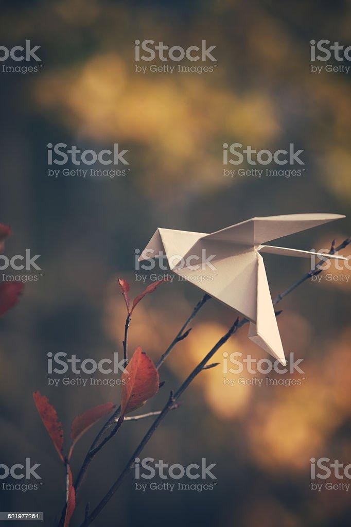 White origami bird on a tree branch stock photo