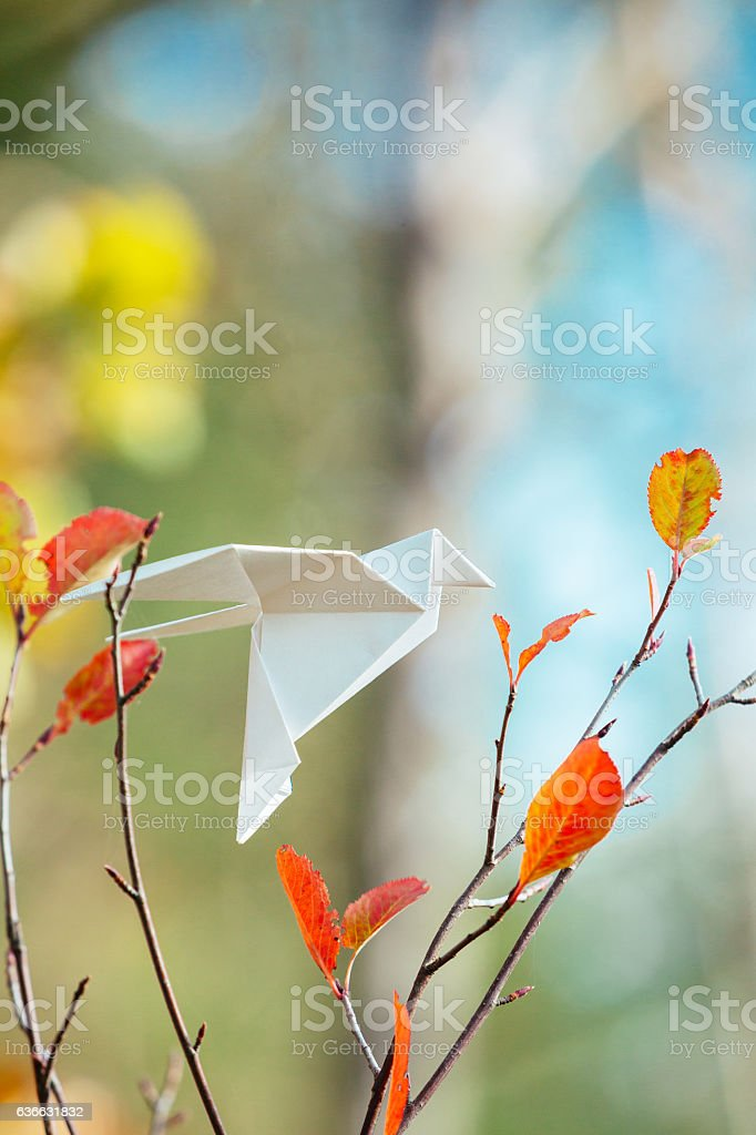 White origami bird on a tree branch stock photo
