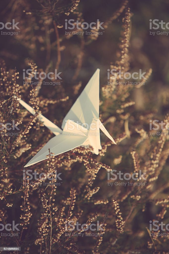 White origami crane on a tree branch stock photo