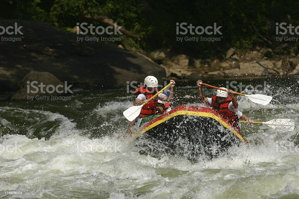 White Paddle royalty-free stock photo
