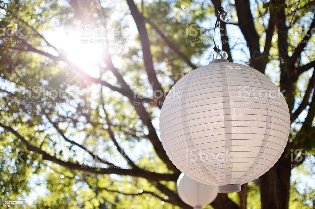 White Paper Lanterns in the Trees stock photo