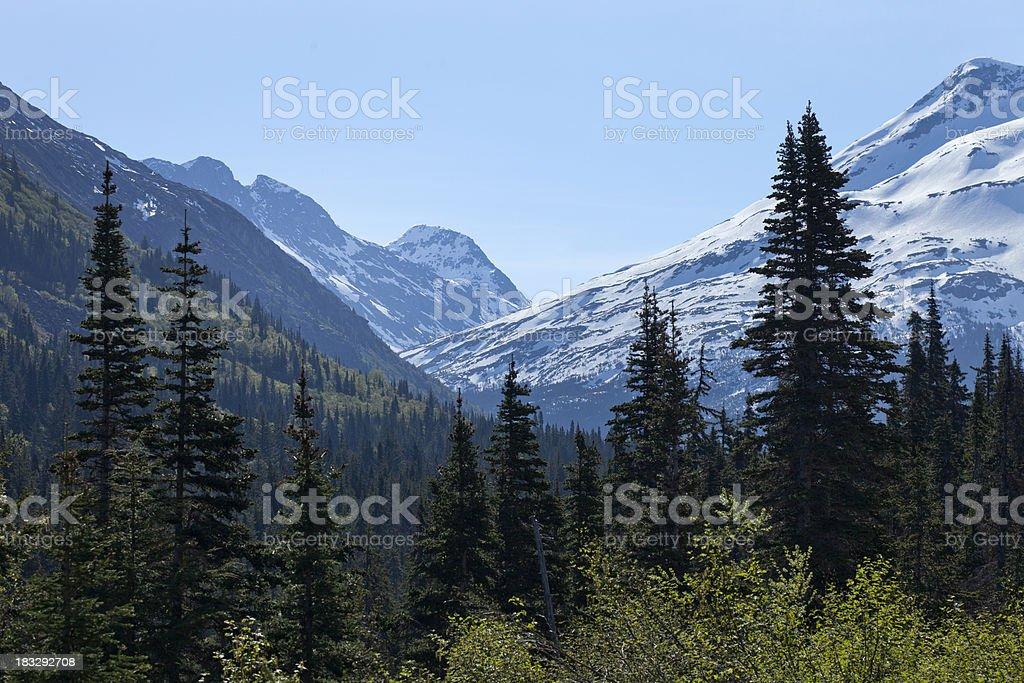 White Pass Mountains Skagway Alaska stock photo