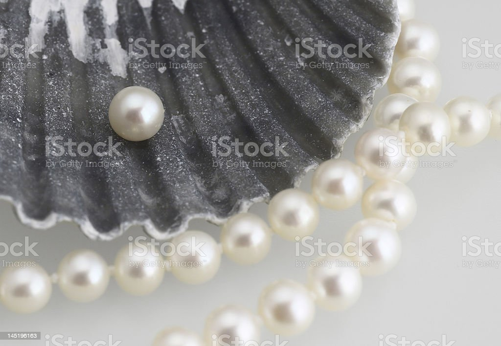 white pearls and shell royalty-free stock photo
