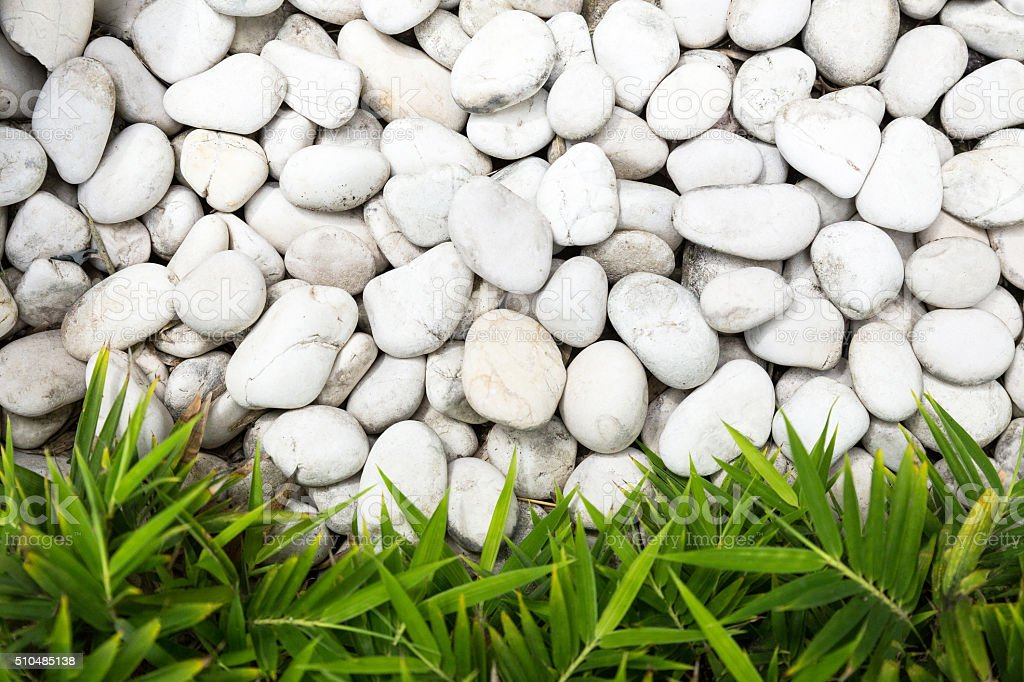 White pebble stones with green bamboo leaves background -stock image stock photo