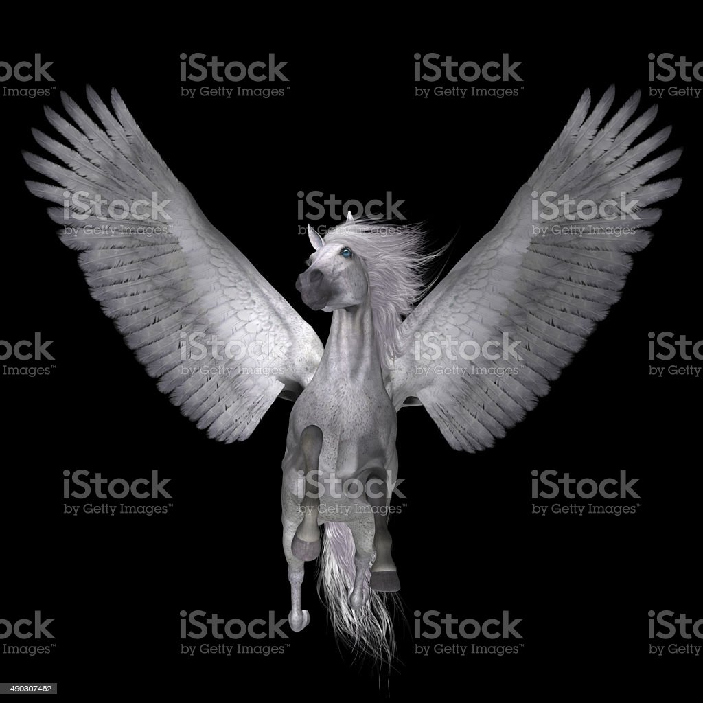 White Pegasus on Black stock photo