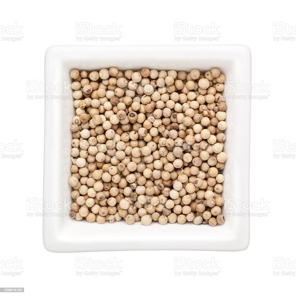 White peppercorn stock photo