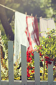 White picket fence and fresh laundry in a garden
