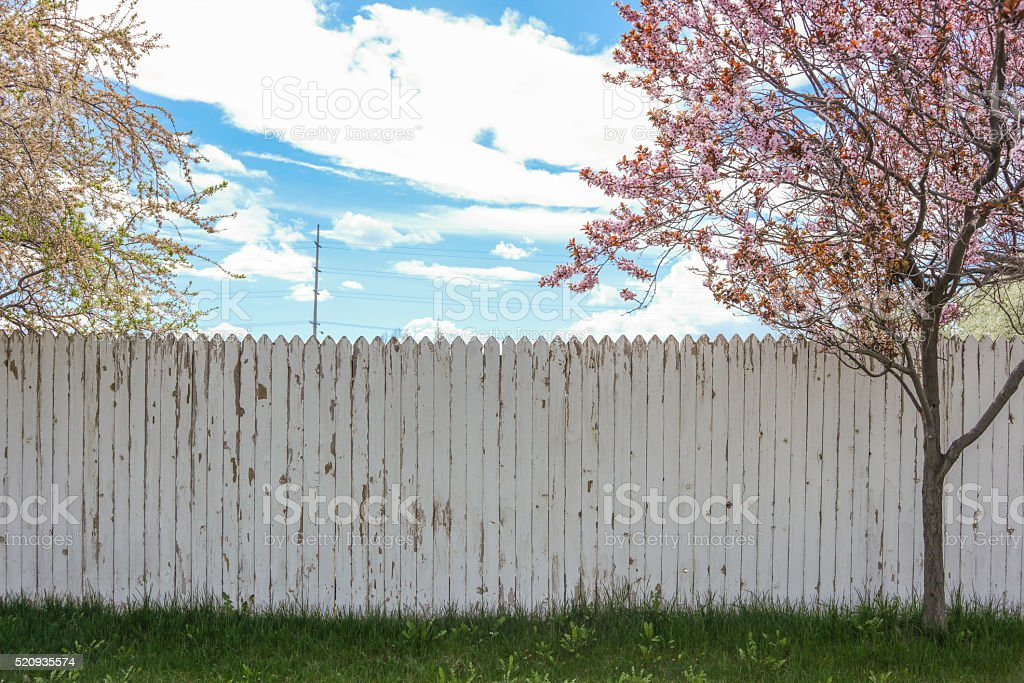 White picket fence in spring stock photo
